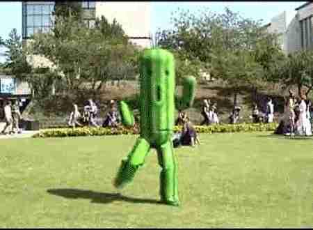 happy cactus gif