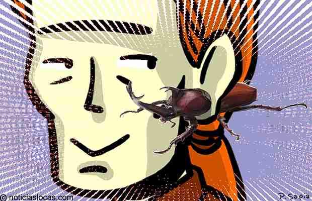 Aros escarabajo