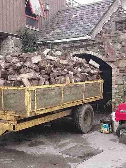 camión llevando madera pasando por un túnel