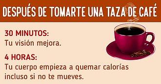Esto Es Lo Que Ocurre En Tu Cuerpo Después De Tomarte Una Taza De Café