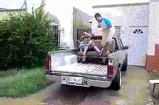 hombres en camioneta