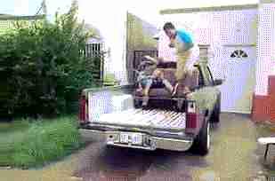 camioneta pick up