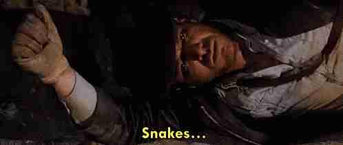 """""""Serpientes... ¿Por qué tuvieron que ser serpientes?"""""""