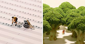 Dioramas En Miniatura