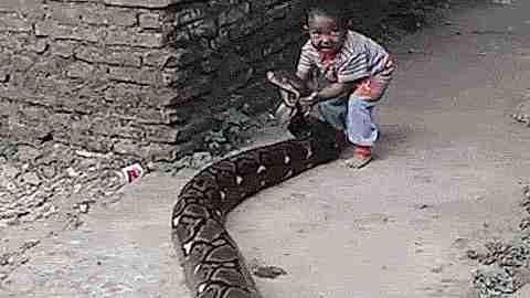 Niño y serpiente