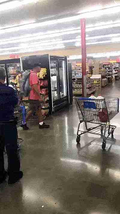 perro empujando el carrito de las compras