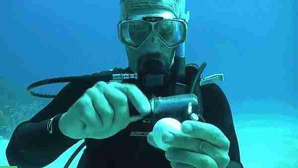 Abriendo un huevo debajo del agua