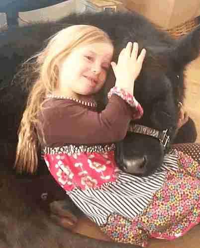 niña acariciando una vaca bebé
