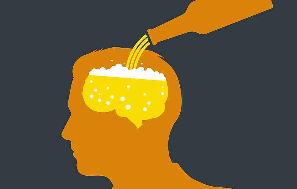 cerveza y cerebro