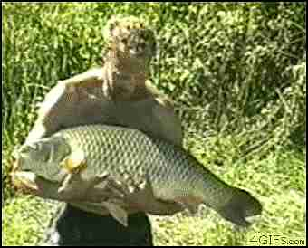 gif pez escapándose