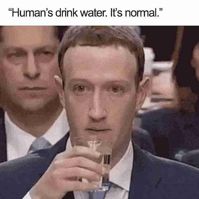 Meme Mark Zuckerberg