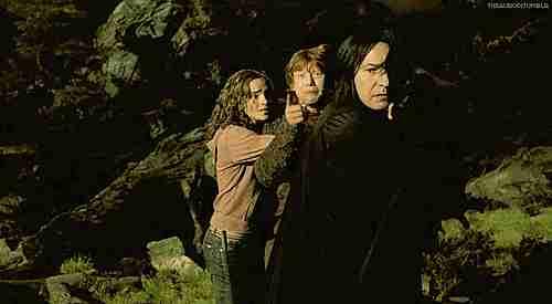 severus snape protegiendo a harry, ron y hermione